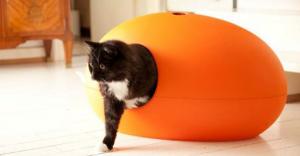 apprendre son chat faire ses besoins dans la liti re. Black Bedroom Furniture Sets. Home Design Ideas