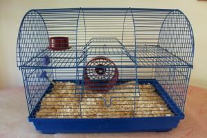 la litiere pour cage du hamster