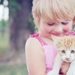 les enfants adorent les animaux,s'attacher au chat,cohabitation chat enfant,d'éduquer l'enfant à respecter le chat, le chat n'est pas un jouet ,respecter la vie du chat, Ne pas crier sur le chat